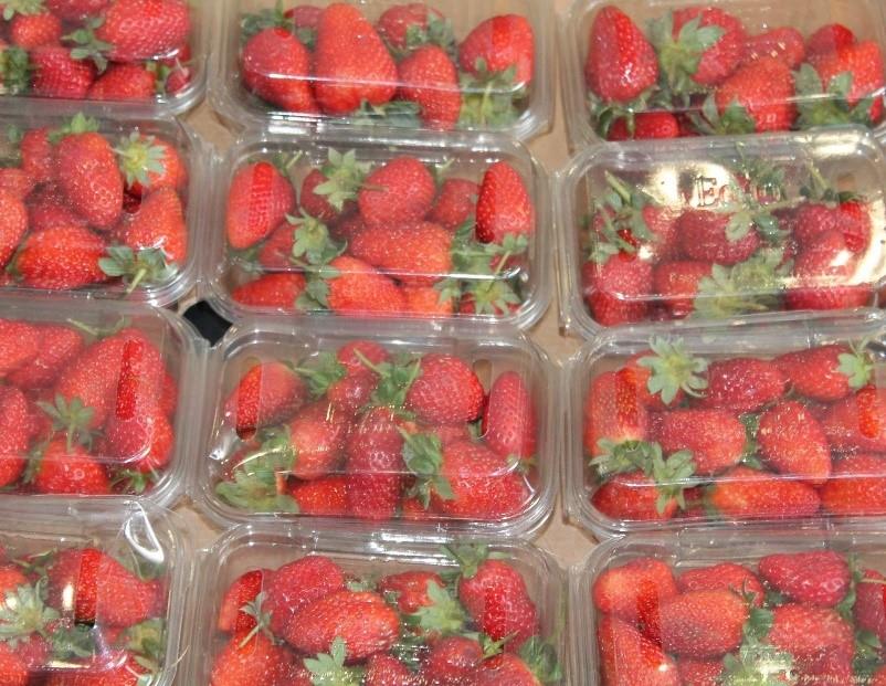morangos em embalagem plásticas