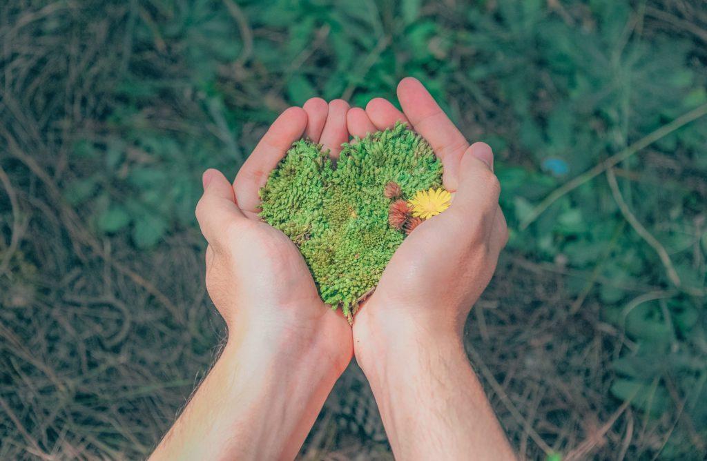 somos sustentáveis